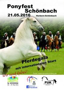 ponyfest_2016