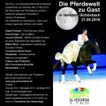 Ponyfest2016_flyer_aussen