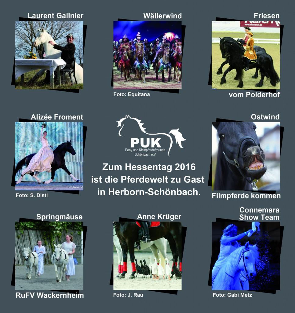 Ponyfest2016_flyer_innen